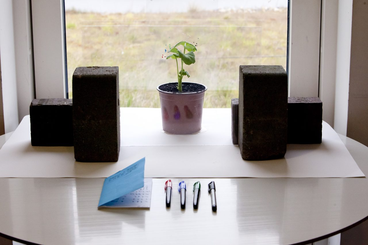 Plant with pens set up of Bio orchestra
